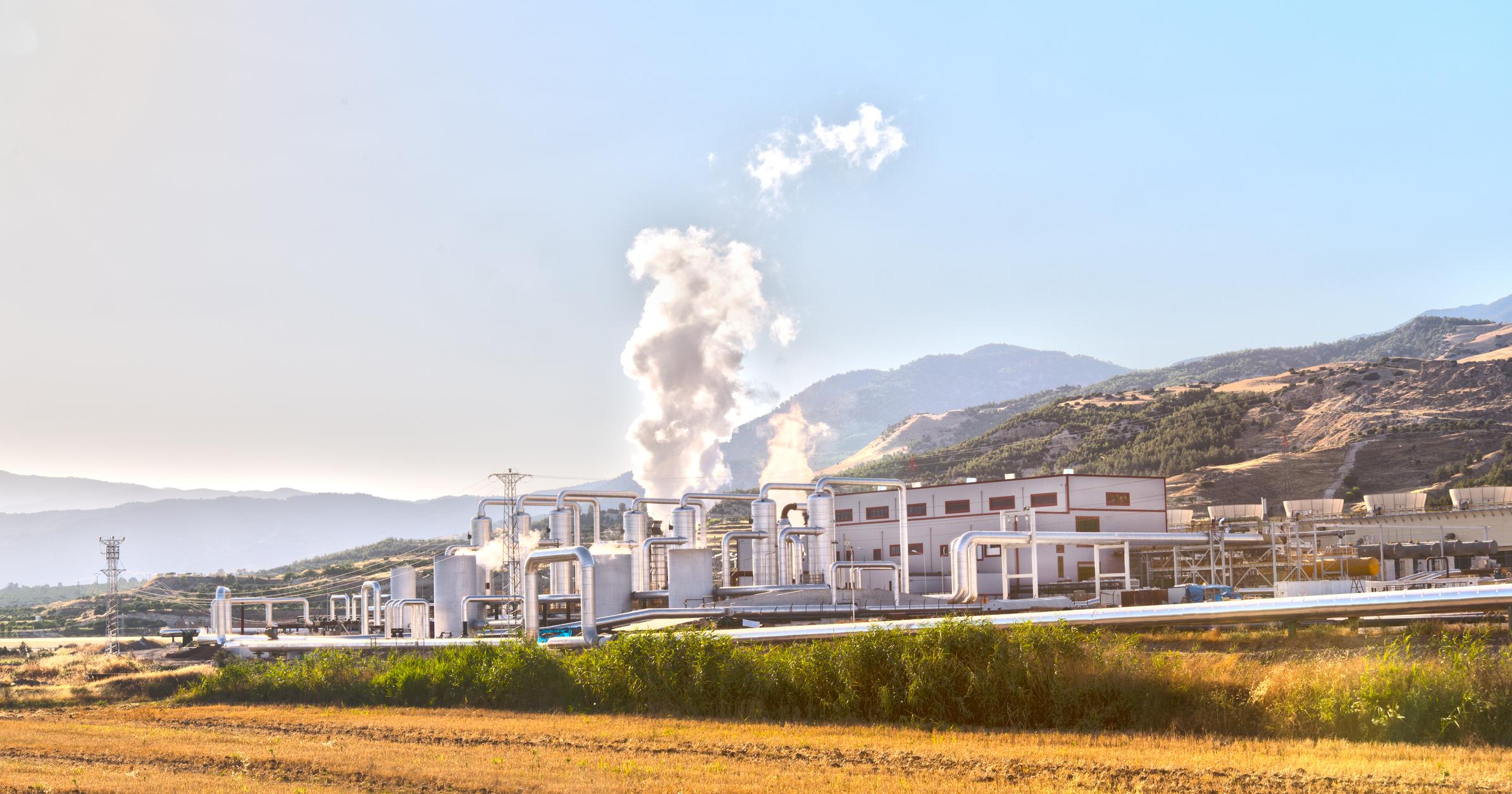 Globale Politik und der Biokraftstoff