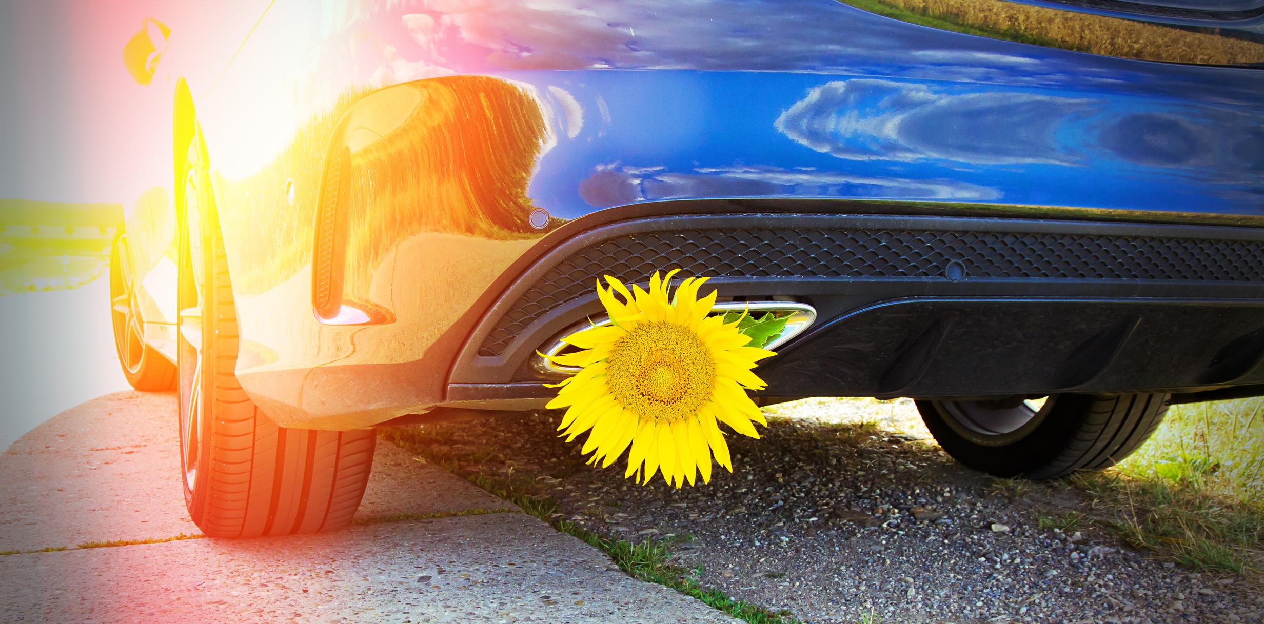 Verwendung von Biodiesel als Treibstoff