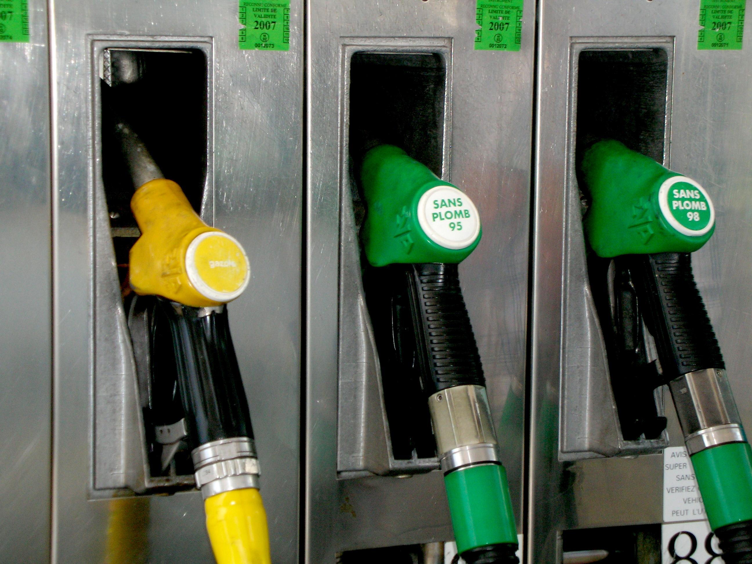 Biokraftstoffe und Elektromobilität – gemeinsam ans Ziel!