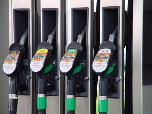 Biotreibstoff – Die Zukunft?